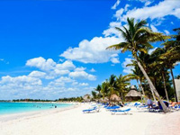 Accessible Tulum & Akumal Tour